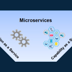 Microservices: Capability as a Service versus Function as a Service